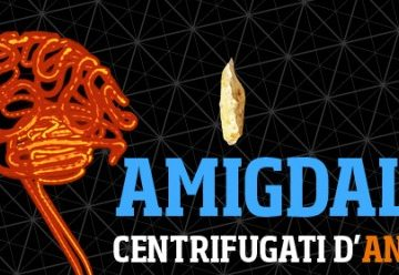 Amigdala