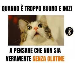 Ricette – gluti…no!